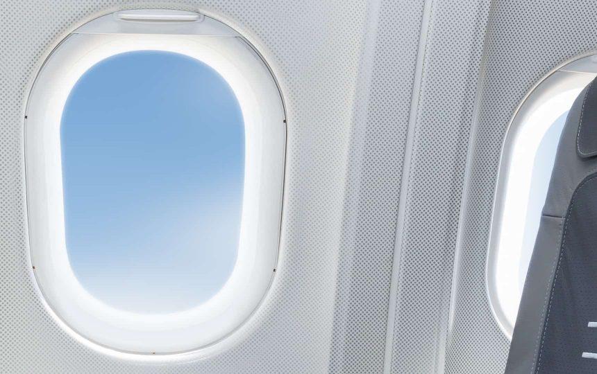 pet airline